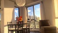 Magnifique condo moderne sur Griffintown