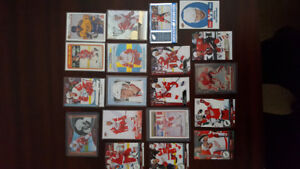 Detroit Red Wings Hockey Card Lot