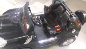 Ride-on-Cars 12v \Voitures Électriques\ Electric car for kids