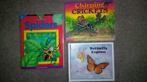 Insects Bugs books