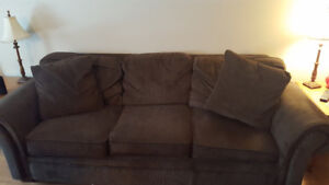 Sofa bed & Leather couch