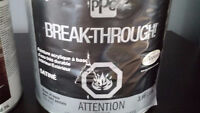 Peinture Breakthrough Valeur 110$
