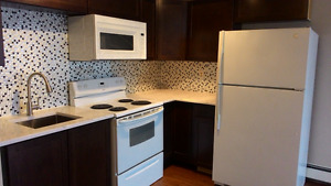 Walk to downtown, new renovated 1B/R for rent in Crescent Height
