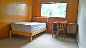 A spacious new renovated bedroom with a private bathroom ! Kitchener / Waterloo Kitchener Area image 1