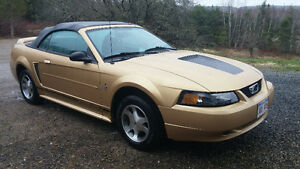 2000 Ford Mustang deluxe Convertible
