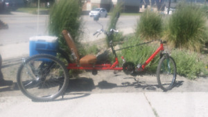 Custom built adult tricycle
