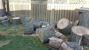 Free Large fire wood pieces