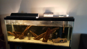 55G long fish tank with stand