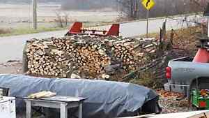 recently cut and split firewood green wood cheap firewood