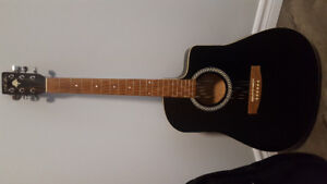 Acoustic Guitar 6 Str Art&Lutherie and soft case