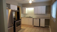 1100 sq ft. 1 bedroom. LARGEST and NICEST in area. March 1st.