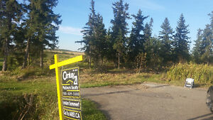 Acreage Land Near Beaumont $169,800