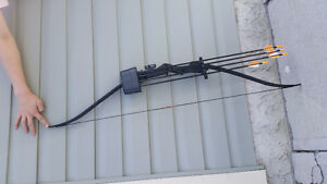 Bear Youth Recurve Bow with Arrows