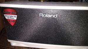 Roland Cube Lite Guitar Amp-Price drop!!