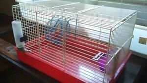 Small rodent cage with accessories