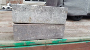 Garden Paving bricks/ Interlock