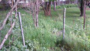 FREE FENCING AND POSTS