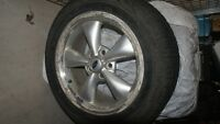 Tires & Rims (MAGS, Mustang)