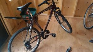 Raleigh Matterhorn men's bicycle needs work