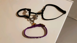 Cat harness and collar