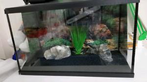 Aquarium 10 galon
