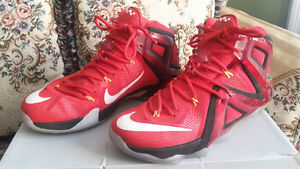 Nike Elite 12 Series LeBron James ☆Like New☆