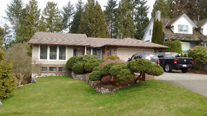 Orchard Dr House For Sale/ Open House April 1st & 2nd 1-4