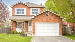 Walkout Basement Apartment Available For Rent in Whitby-May 1st