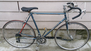 Vintage 12 speed Road Bike with Newer Aluminum 700c Wheels