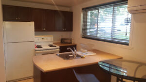 2 bed Condos for Rent