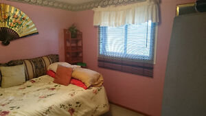 furnished bedroom in a family home - available Jan. 1, 2017 Cambridge Kitchener Area image 3