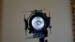Lowel Pro light and stand