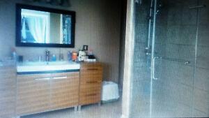 Logement de 2 ou 3 chambres - Secteur Lac Beauchamps Gatineau Ottawa / Gatineau Area image 6