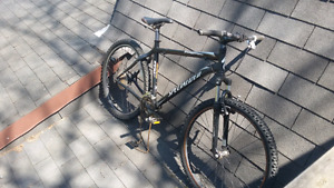 Specialized stumpjumper 19 inch