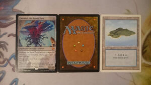 Buying Magic Card Collections
