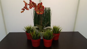 Artificial Potted Plants & Orchid - Ikea