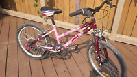 "Sportek 20"" girl's bicycle"