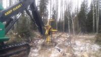 Loggers , woods men needed
