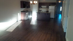 3 bdr 2 bath Steinbach for rent, all 1 level with garage