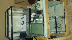 Fish breeding system ideal for Discus Poisson Reproduction