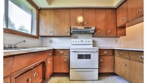 Vintage Mid Century Kitchen Cabinets