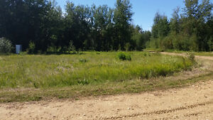 BIG SALE ! RENT TO OWN ! LESSER SLAVE LAKE LOTS (KINUSO)
