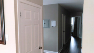 Rent a room in Armdale in a 2bd apt by the rotary all inclusive