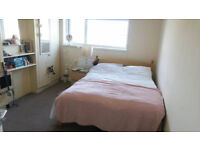 Lovely Double Bedroom Available in Friendly and Modern Houseshare