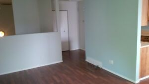 Huge Renovated 2BDR Condo - Available Nov. 1st