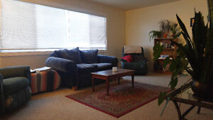 Roommate to Share 3 Bedroom Apartment with 2 Others