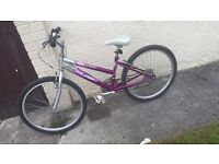 RALEIGH CHILDREN'S BIKE PURPLE AND SILVER WITH STICKERS