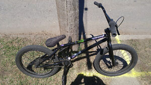 Eastern Vulture Limited BMX