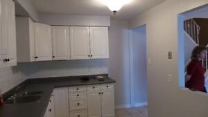 3 bed townhouse available for Dec 1 or 15, 14 Williamsburg