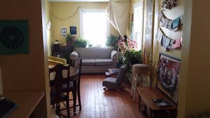 Clean, Queer, Creative Home - Room Available mid-April or May 1